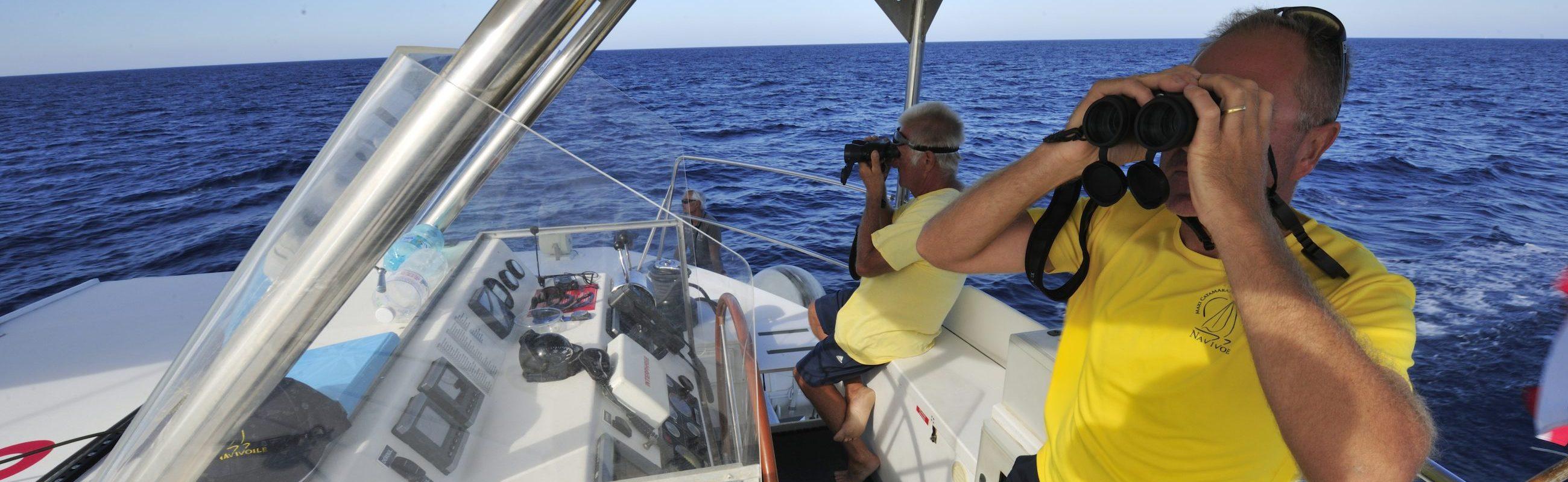 catamaran navivoile contact et accès canet en roussillon et port vendres