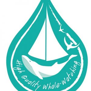 catamaran navivoile partenaires labellisé High Quality Whale Watching