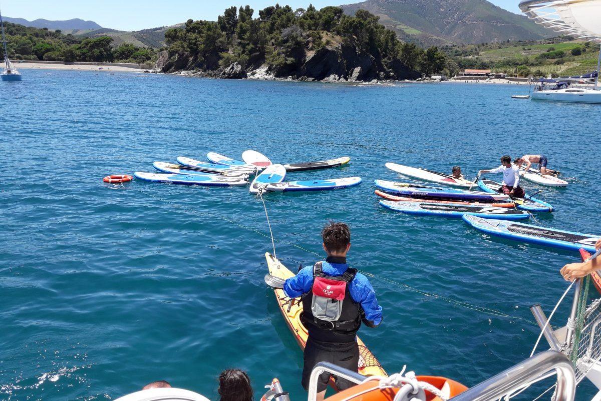 groupes de particuliers et entreprises catamaran navivoile privatisation et paddle baie de paulilles