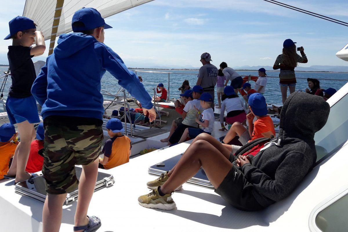 sortie scolaire catamaran navivoile départ canet en roussillon navigation à la voile