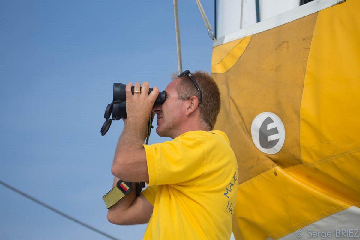catamaran navivoile croisiere chante avec les dauphins au depart de canet en roussillon avec capitaine en observation