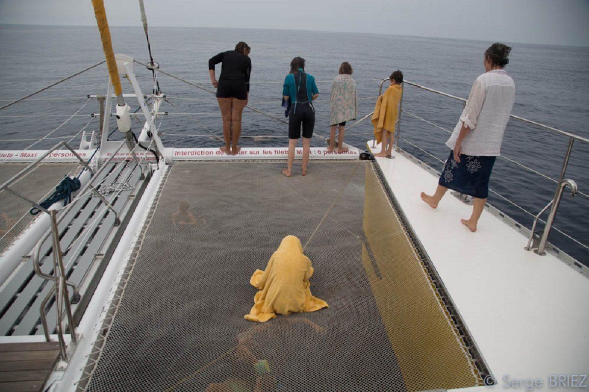 catamaran navivoile croisiere chante avec les dauphins au depart de canet en roussillon avec passagers en observation sur les filets a l'avant du bateau
