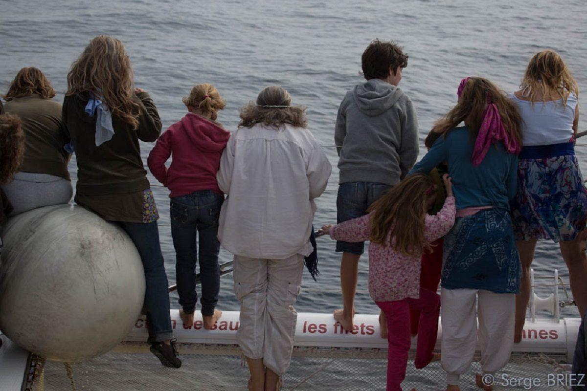 catamaran navivoile croisiere chante avec les dauphins au depart de canet en roussillon avec passagers observant les dauphins a l'avant du bateau