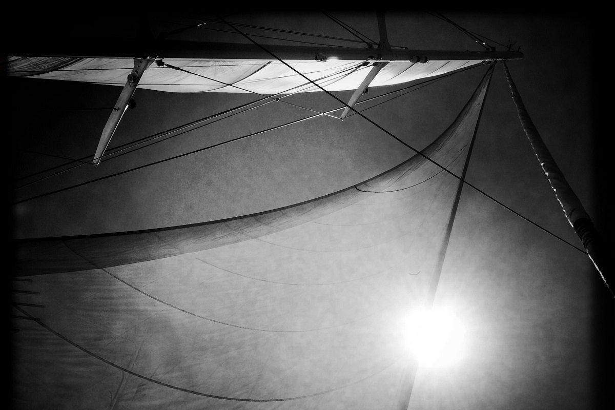 catamaran navivoile croisiere chante avec les dauphins au depart de canet en roussillon bateau sous voiles et au large des pyrenees orientales