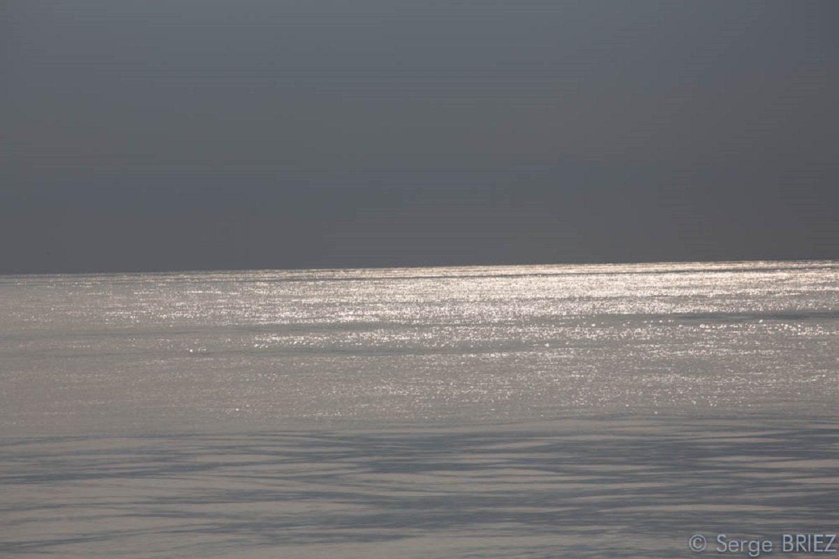 catamaran navivoile croisiere chante avec les dauphins au depart de canet en roussillon en fin de journee au large des pyrenees orientales