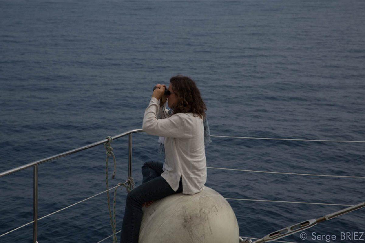 catamaran navivoile croisiere chante avec les dauphins au depart de canet en roussillon passagere en observation sur etrave bateau