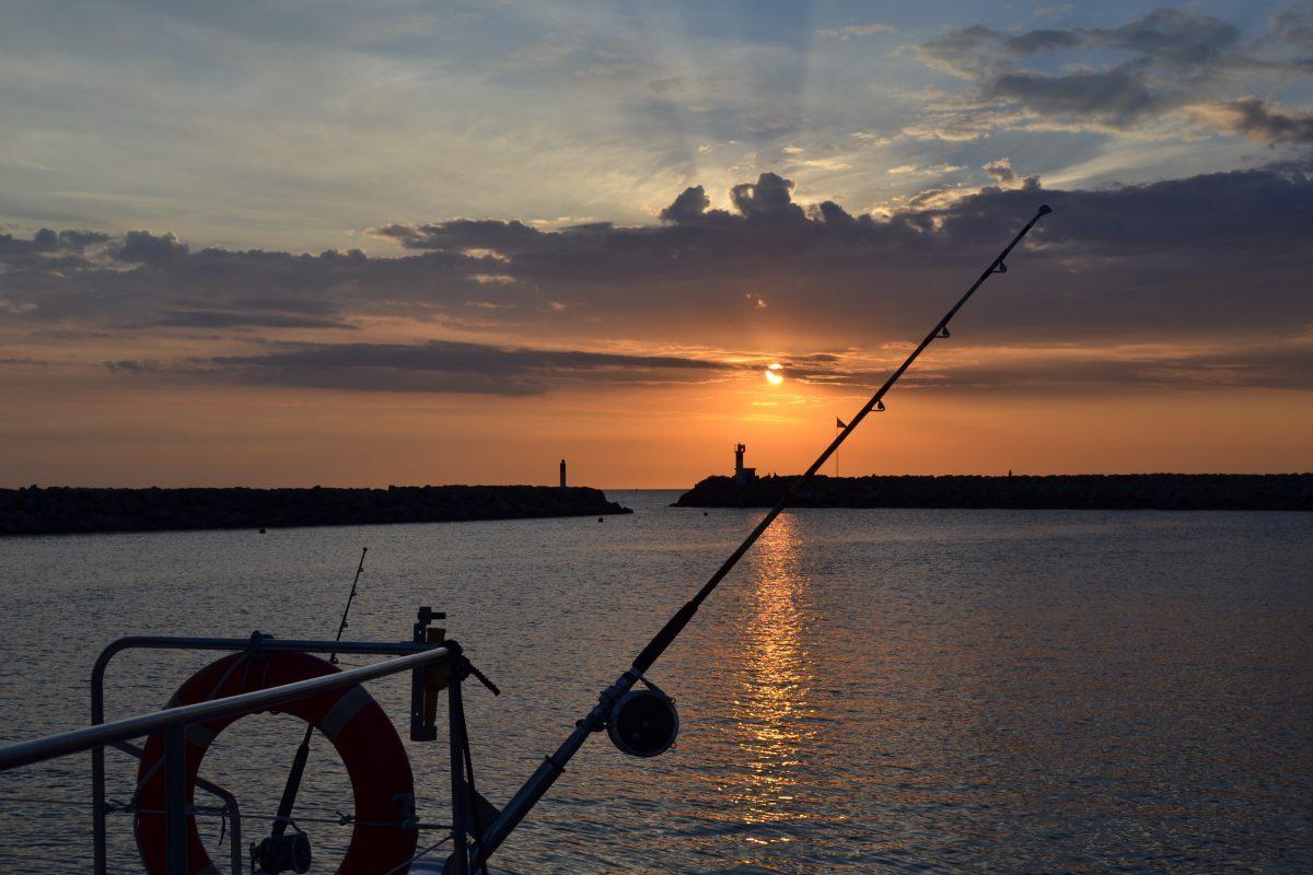 catamaran navivoile peche au gros a la traine rapide au large des pyrenees orientales et au depart du port de canet en roussillon au soleil levant