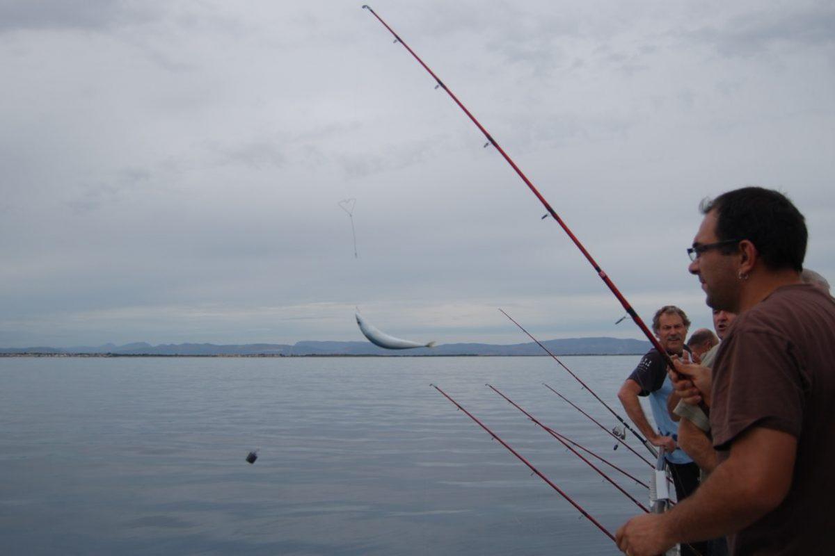 catamaran navivoile peche cotiere en face de canet en roussillon avec pecheurs en attente