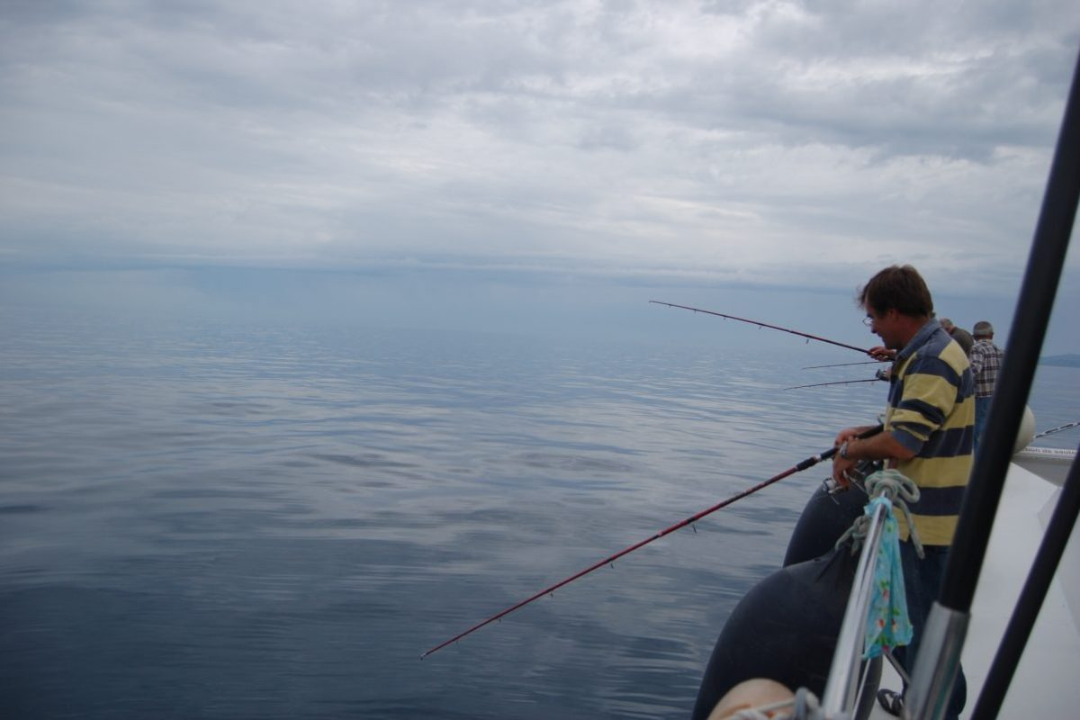 catamaran navivoile peche cotiere en face de canet en roussillon par mer calme