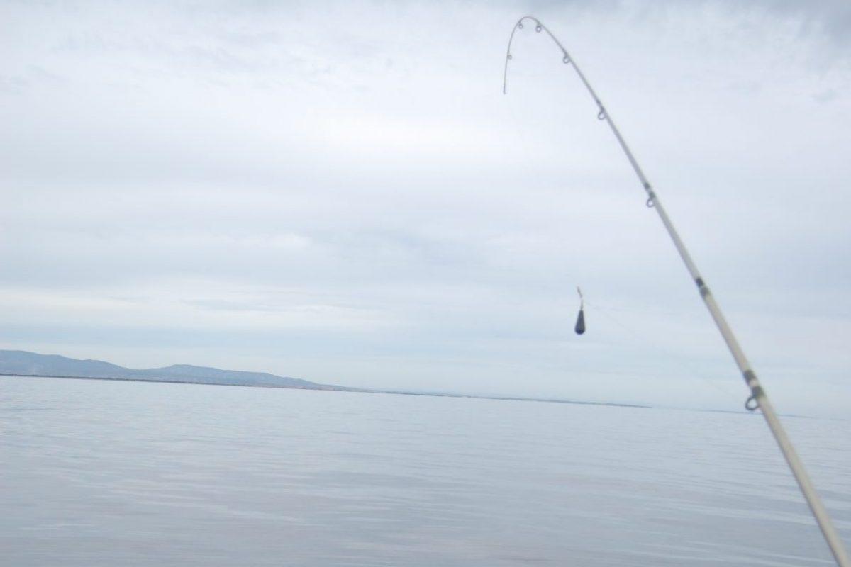 catamaran navivoile peche cotiere en face de canet en roussillon touche sur canne a peche