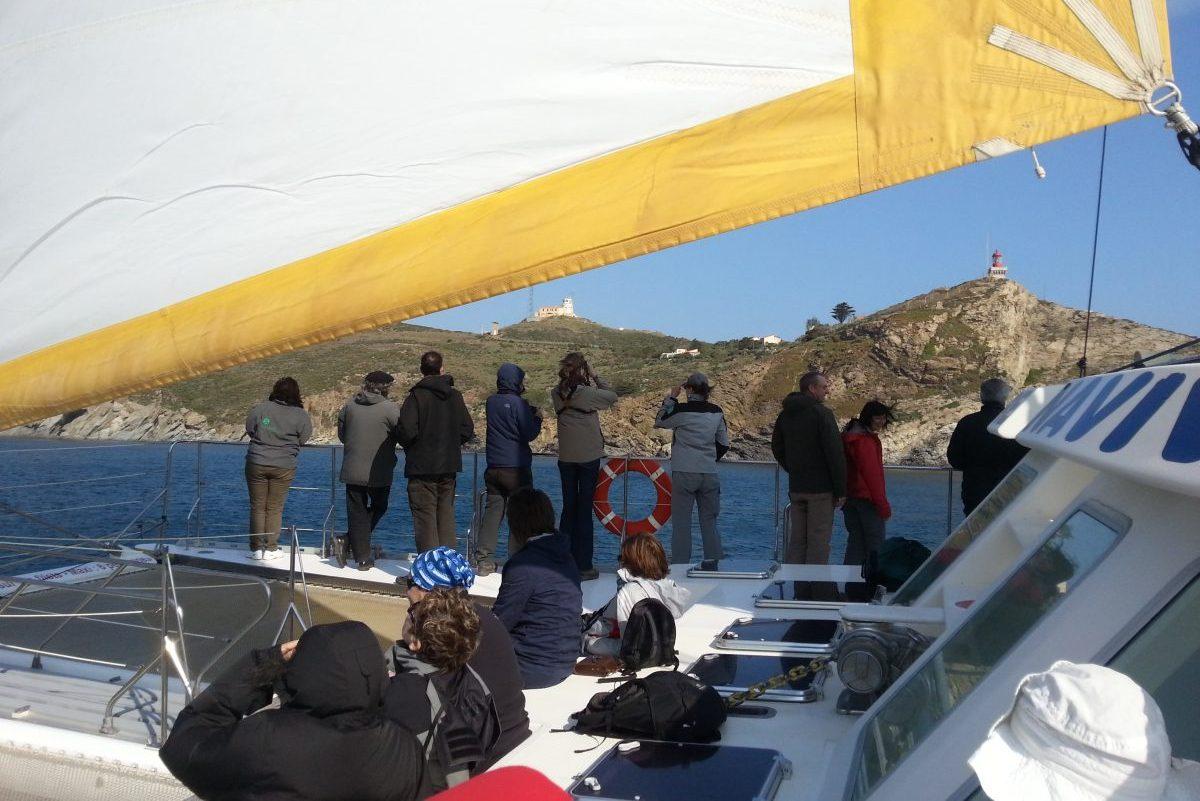 catamaran navivoile tarifs groupe agence bateau non privatise au depart de port vendres ou canet en roussillon vue baie de paulillles